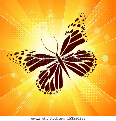 orange butterfly on a being