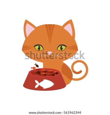 orange cat green eyes plate