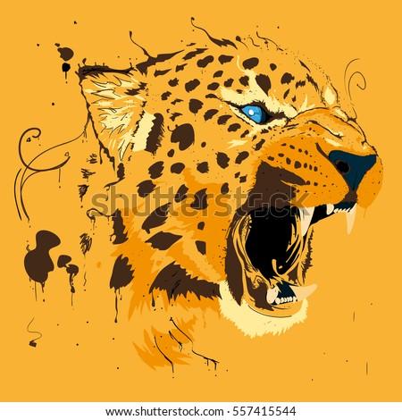 orange splash cheetah