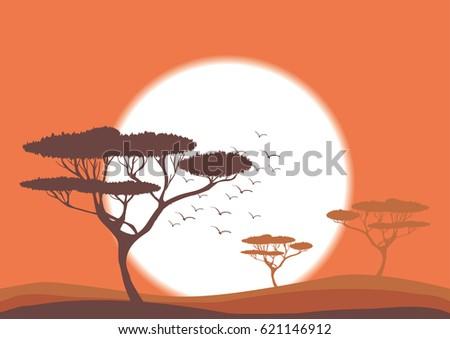 Orange sunset in savanna vector nature illustration, Africa landscape, acacia trees