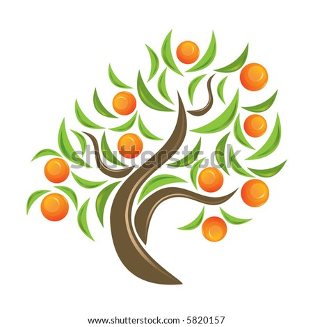 Orange-tree  Orange Tree Vector