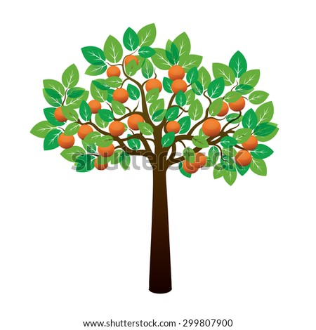 orange tree and fruits vector