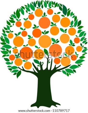 orange tree isolated on white