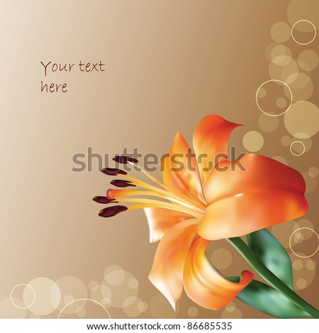 orange vector lilly on abstract