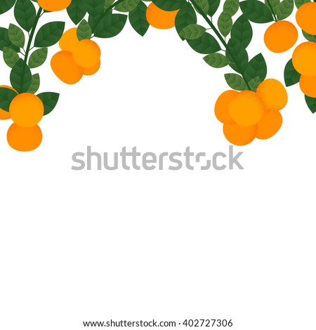 orange with leaves and branches