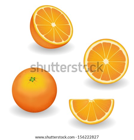 oranges  four views  whole