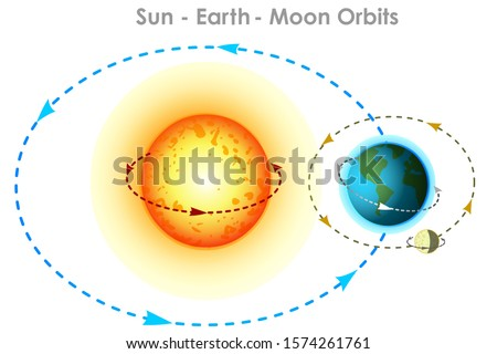 Orbits. Sun earth, moon orbits diagram. Orbit movements with directions and angles. Elliptical arrows showing trajectory directions. Physics, astronomy illustration. White background. Vector graphic