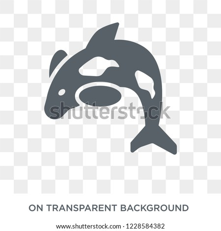 Orca icon. Trendy flat vector Orca icon on transparent background from animals  collection.