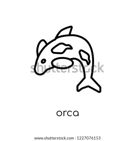 Orca icon. Trendy modern flat linear vector Orca icon on white background from thin line animals collection, editable outline stroke vector illustration