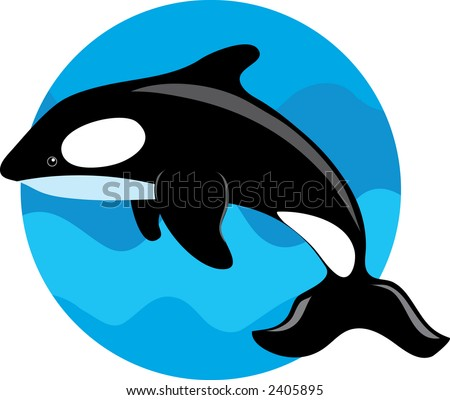 Orca whale on a blue circle background
