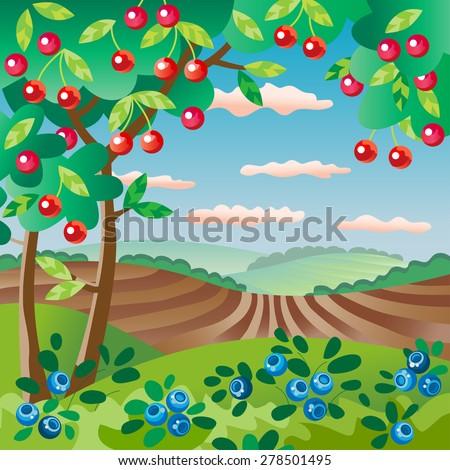 orchard fruit garden cherry