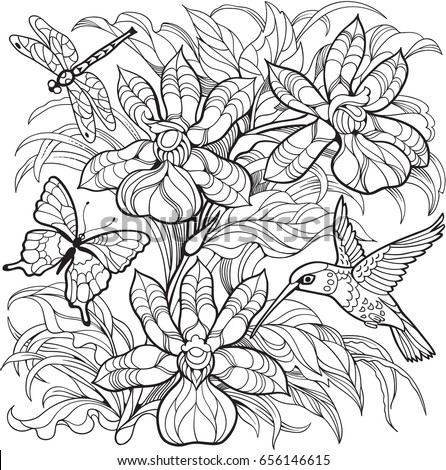 Orchid flowers, insects and hummingbird.Vector coloring page for adult and older children