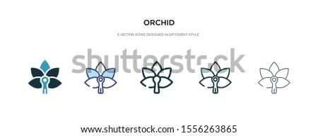 orchid icon in different style