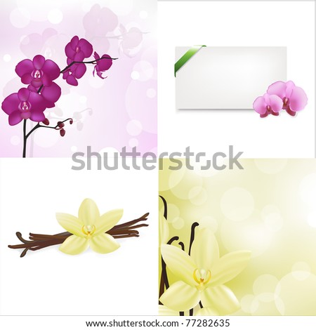Orchids, Vanilla Set And Blank Gift Tag With Green Satin Ribbon, Isolated On White Background, Vector Illustration