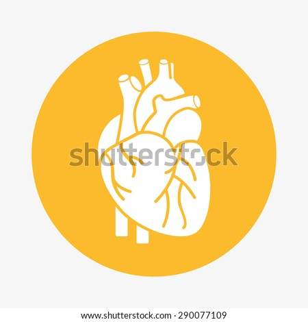 organ human icon design  vector