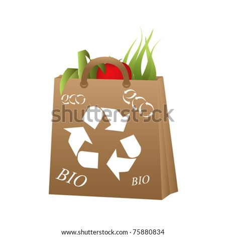 Organic and bio food in recycled bag