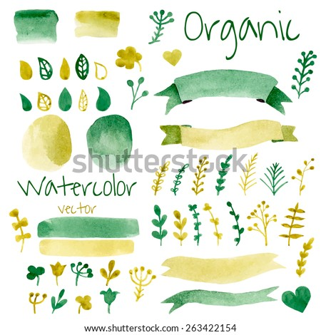 Shutterstock Organic, bio, natural design elements. Vintage vector watercolor set in green colors.