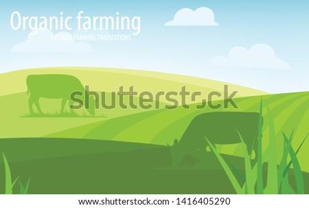 Organic farming. Natural farming traditions. Rural landscape, farm animals and design elements