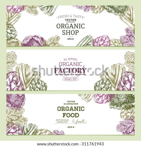 organic food banner collection