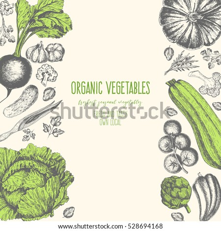 Organic food card design. Farmers market menu design. Organic food poster. Vintage hand drawn sketch vector illustration. Linear graphic.