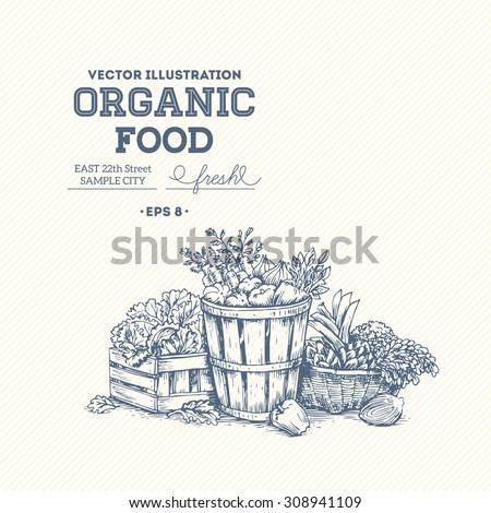 organic food design template....