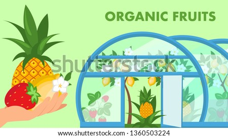 Organic Fruits Web Banner Flat Vector Template. Eco Farm. Farmer Hand Holding Exotic Summer Harvest. Pineapple, Lemon Trees Growing in Hothouse Cartoon Illustration. Juicy Ripe Strawberries Crop