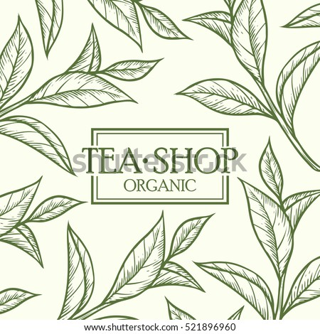 Organic green white black tea shop cup leaf, bean vector hand drawn template packaging cosmetic, label, banner, poster, identity, branding. Stylish design with sketch illustration of tea sketch.
