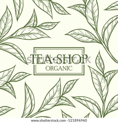 organic green white black tea