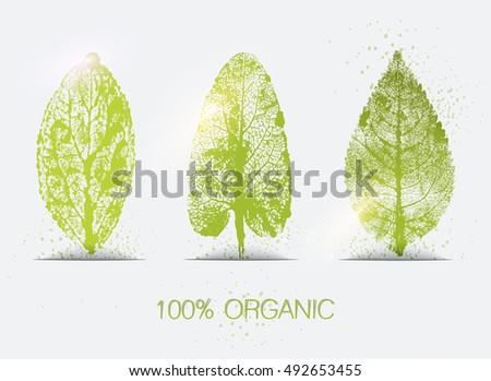 Organic leaves imprints icon set. Eco-icons.