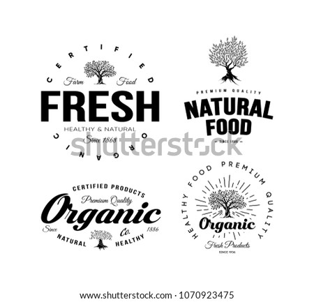 Organic Natural And Healthy Farm Fresh Food Retro Emblem Set Vintage Olive Tree Logo Isolated