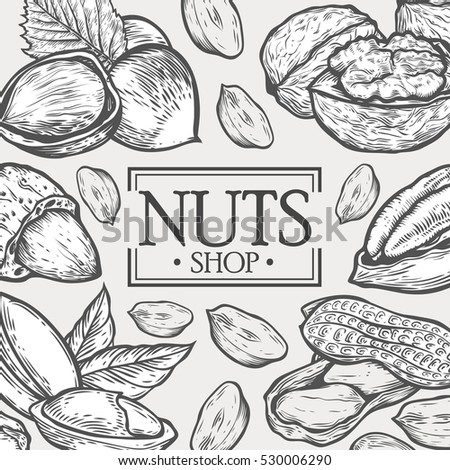 Organic Nuts food shop vector hand drawn template packaging food, menu label, banner poster identity, branding. Stylish design with sketch illustration of nuts sketch #530006290