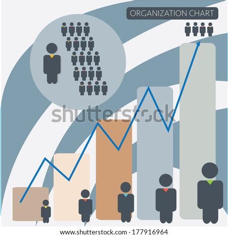 organization chart infographics vector