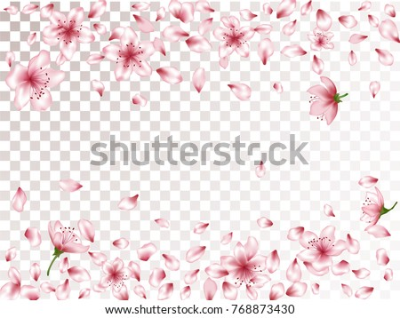 Oriental apricot or japanese cherry blossom petals isolated, flower elements falling vector illustration. Windy petals and pink flower vector elements flying, bloom confetti border on transparent.
