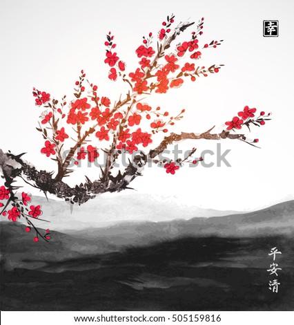 oriental sakura cherry tree in
