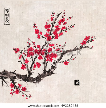 oriental sakura cherry tree in
