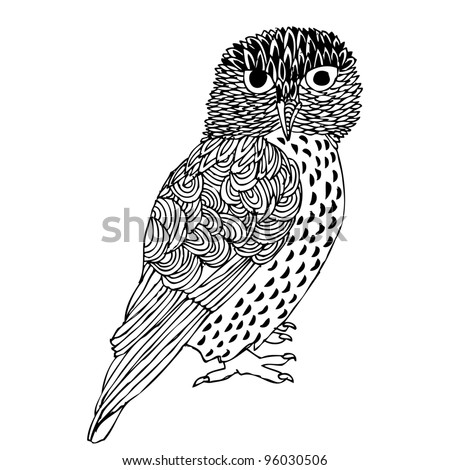 Original Hand drawing of Owl- vectorized.