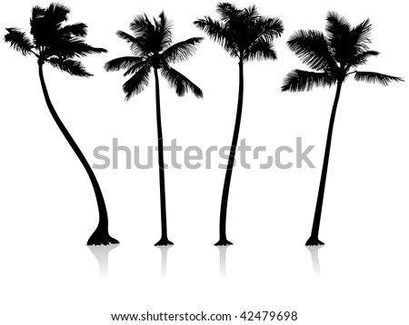 Original Vector Illustration: palm trees background File is AI8 compatible