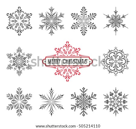 Ornate vector snowflakes with Christmas label.
