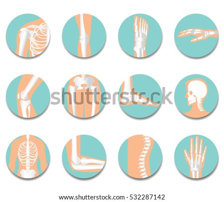 orthopedic and spine icon set