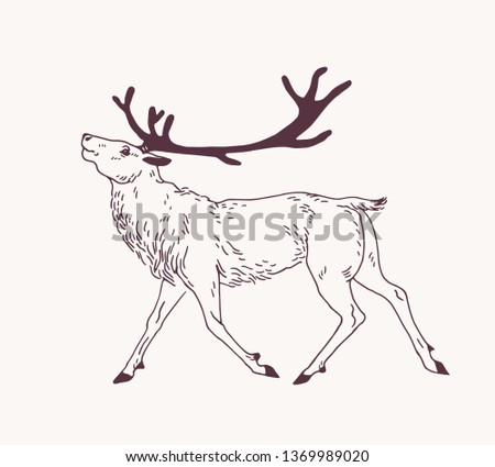 outline drawing of walking male
