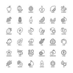 Outline icons set. Flat symbols about fruit