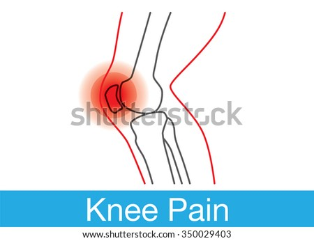 outline of knee and bone which