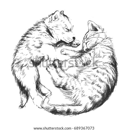 outline vector sketch cat and