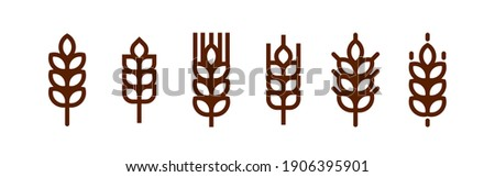Outline wheat icon or wheat symbol. Barley spike or corn ear. Bakery, bread or agriculture logo concept. Line grain sign. Vector illustration