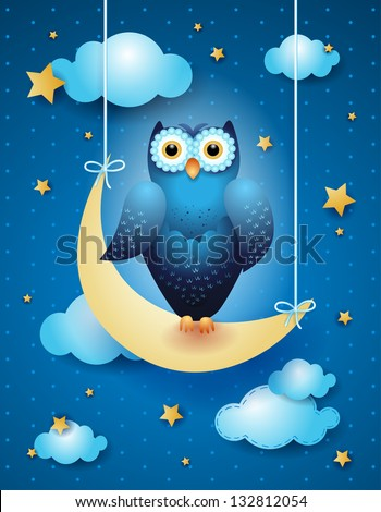 owl and moon  nocturnal sky