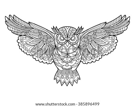 owl bird coloring book for