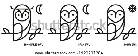 Owl icons. Barn, Long Eared and Snow. Ornithology, Nocturnal, Bird of Prey. Knowledge and Knowledge. Mono outline style - Vector ストックフォト ©