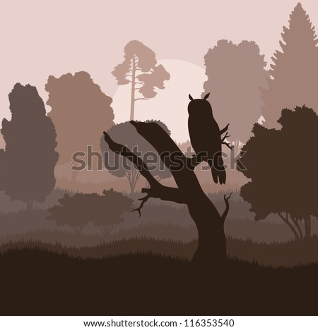 Owl in forest vector background