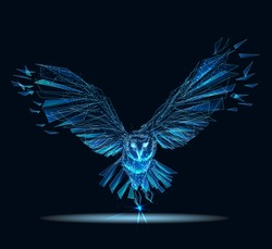Owl isolated from low poly wireframe on dark background. Wild bird of prey. Vector polygonal
