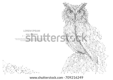 owl isolated from low poly